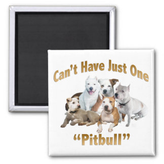 Can't Have Just One Pitbull Magnet