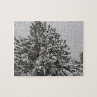 Can't See the Forest for the Trees Puzzle