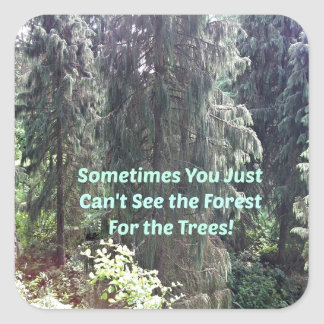 Can't see the forest for the trees. square sticker