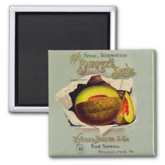Cantaloupe Fruit Seed Advertising Vintage 2 Inch Square Magnet