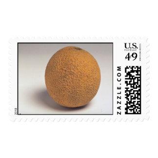 Cantalupo delicioso sellos