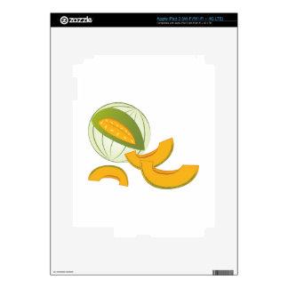 Cantalupo iPad 3 Skin