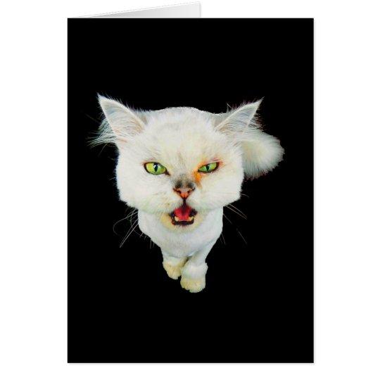 Cantankerous, cute crazy cat card