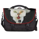 Cantankerous, cute crazy cat commuter bag