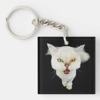 Cantankerous, cute crazy cat keychain