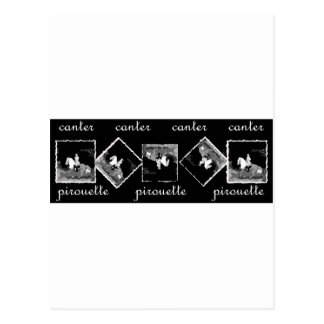 Canter Pirouette black Postcard