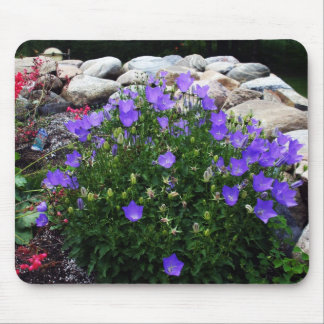 Canterbury Bells - Bellflowers Mouse Pad