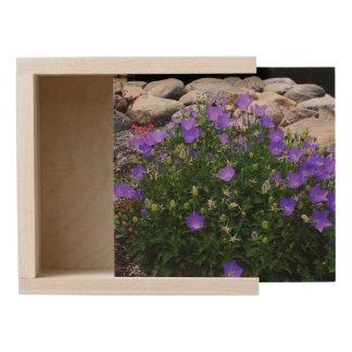 Canterbury Bells & Bellflowers Wooden Keepsake Box
