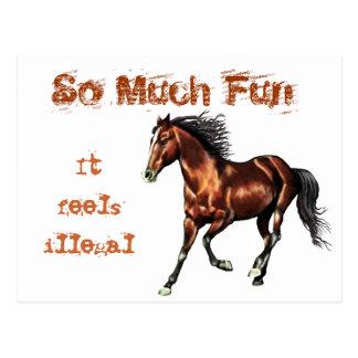 Cantering Bay Horse Postcard