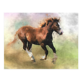 Cantering foal postcard