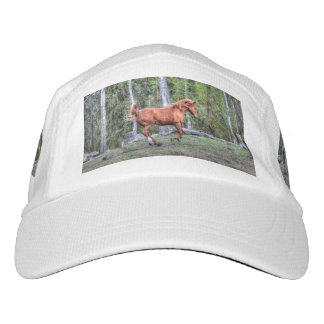 Cantering Forest Pony and Treed Pasture Headsweats Hat