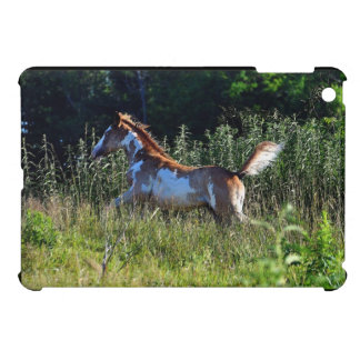 Cantering Pinto Colt on Horse Ranch Cover For The iPad Mini