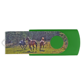 Cantering, Running Horses and Pasture Equine Photo Swivel USB 2.0 Flash Drive