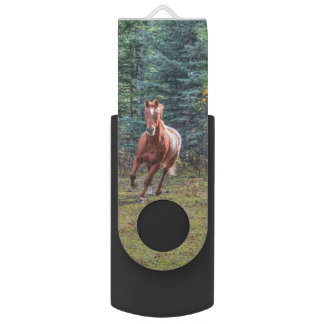 Cantering Sorrel Horse Equine Action Photo Flash Drive