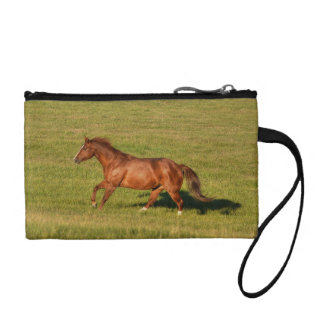 Cantering Sorrel Mare & Field Equine Photo Coin Purse