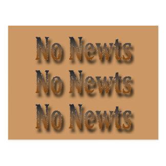 Canto anti divertido de Newt Gingrich Tarjeta Postal
