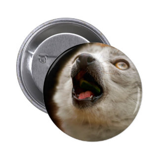 Canto coronado del Lemur Pin