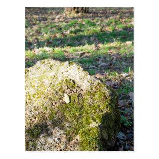 Canto rodado cubierto de musgo de piedra grande en postales