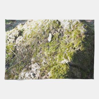 Canto rodado cubierto de musgo de piedra grande en toallas