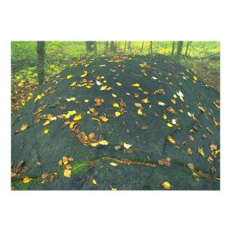 Canto rodado y hojas de otoño erráticos abstractos invitación