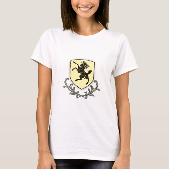 Canton Shaffhausen T-Shirt