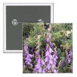 Cantorbery Belces púrpura 1 botón Pins