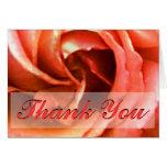 Cantorbery color de rosa le agradece los regalos d tarjeta pequeña