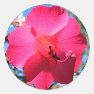 Cantuta Round Sticker