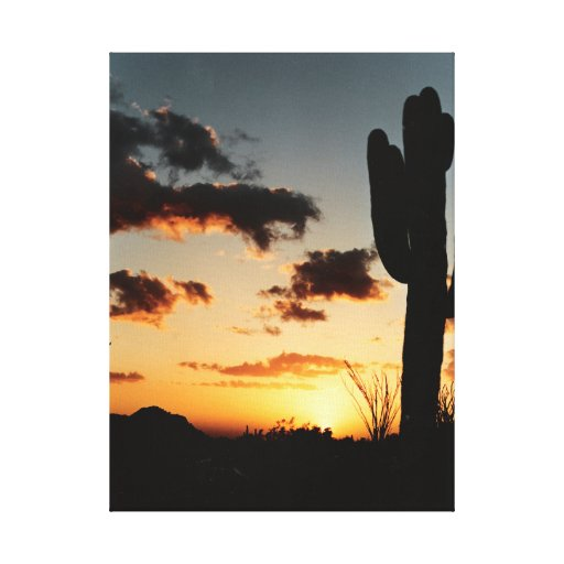 Canva Sunset in Arizona Picture Canvas Print