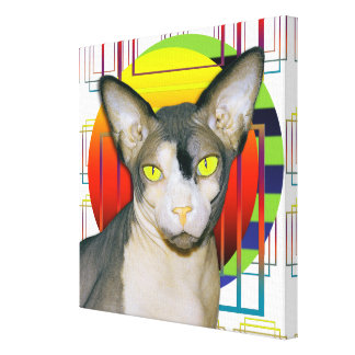 Canvas 12x12 Sphynx Cat on transparent background