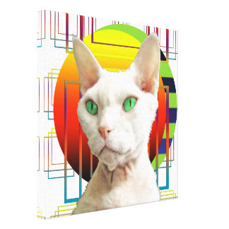 Canvas 12x12 White Cat on Transparent background