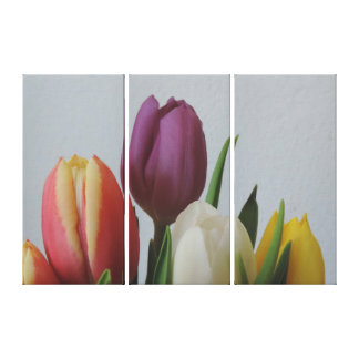 Canvas 3 side by side Large, Colorful Tulips