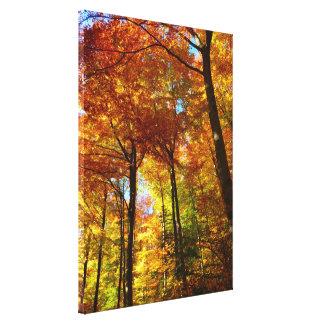 Canvas Art-Autumn Trees