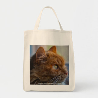 Canvas Grocery Bag, Main Coon adoption cat