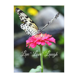 Canvas/Paperkite Butterfly/Live love Laugh Canvas Print