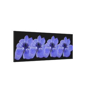 Canvas Print - Blue Anemone Flowers