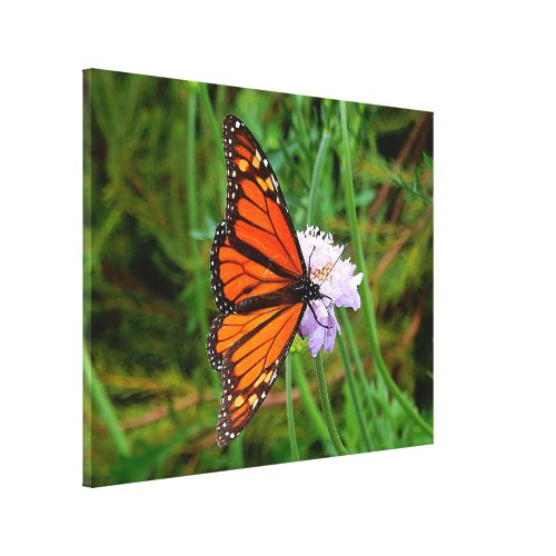 Canvas Print - Butterfly Flower