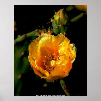 CANVAS PRINT, DESERT ROSE - POSTER