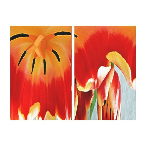Canvas Print - Heart of a Tulip