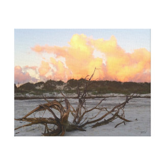 Canvas Print of Driftwood on the beach at sunrise
