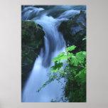 Canvas Print: Sol Duc Falls