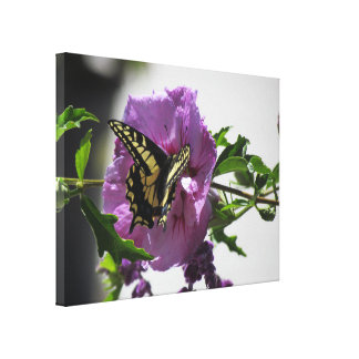Canvas Print - Swallowtail Butterfly