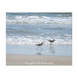 Canvas:Sandpipers on the Beach - Topsail Island NC Canvas Print
