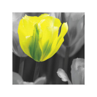 Canvas with yellow tulip
