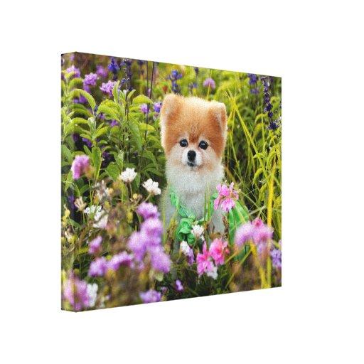 Canvas Wrap - Bella's Secret Garden Stretched Canvas Prints