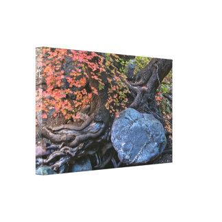 Canvas Wrap: Embraced Stretched Canvas Prints