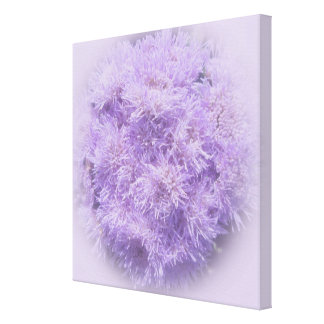 Canvas - Wrapped - Ageratum