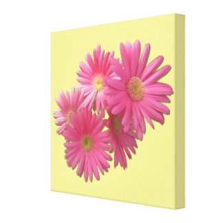 Canvas - Wrapped - Dark Pink Gerbera Daisies