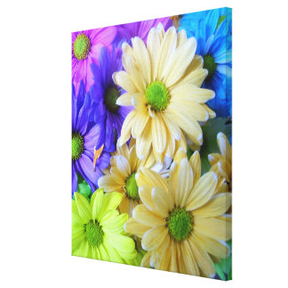 Canvas - Wrapped - Multicolor Daisies l Stretched Canvas Prints