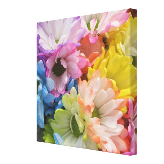 Canvas - Wrapped - MultiColored Daisies II